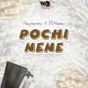 Pochi Nene  by Rayvanny & S2kizzy