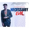 Happiness  by Stonebwoy ft Jah Vinci