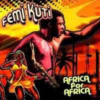 Politics In Africa by Femi Kuti