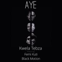 Aye (Soweto Mix; Feat. Femi Kuti & Black Motion) - Femi Kuti