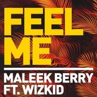 Feel Me - Maleek Berry ft. Wizkid