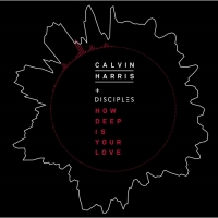How Deep Is Your Love by Calvin Harris & Disciples