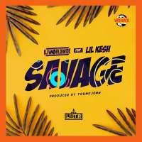 Savage - DJ WorldWide feat. Lil Kesh & Young Jonn