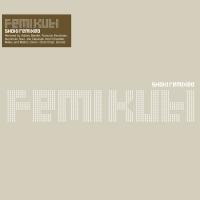 What Will Tomorrow Bring (Joe Claussell Remix) by Femi Kuti