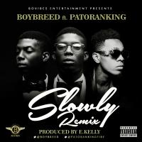 Slowly (Remix) by BoyBreed ft. Patoranking