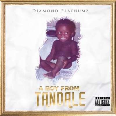 Pamela - Diamond Platnumz Ft. Young Killer