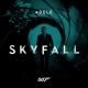 Skyfall.  by Adele